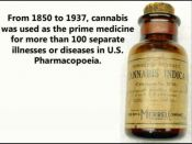 From-1850-to-1937-cannabis-was-used-as-the-prime-medicine.jpg